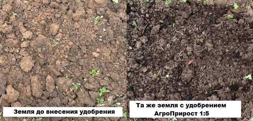 земля с удобрением агроприрост и без